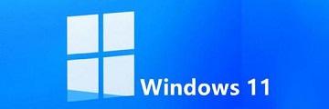怎么设置Win11小图标-windows11小图标的使用方法