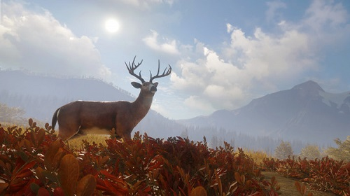 猎人荒野的呼唤