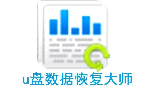 u盘数据恢复大师段首LOGO