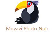 Movavi Photo Noir段首LOGO